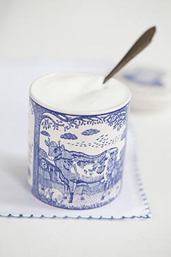 Low lactose yogurt