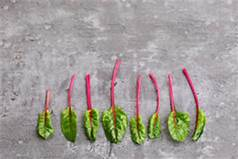 Harness 'Veg Power' and the Unbeetable Beetroot with UK's Love Your Gut campaign www.loveyourgut.com