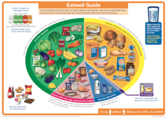 Portion sizes - latest Love Your Gut blog